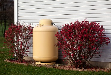 propane tank sitting between two bushes next to a house